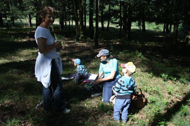 Piknik - posilnenie pred ďalším hľadaním