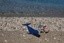 Aj v Chorvátsku majú žralokov - ale našťastie len hračkárskych