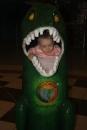 Malá krokodílka