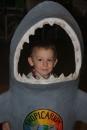 Pozor na žraloky... - i keď tento má taký nevinný pohľad...